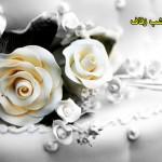 آشنایی با اعمال مستحبی شب زفاف