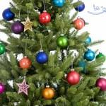 عکس های درخت کریسمس