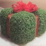سبزه هفت سین مدل جعبه کادو