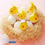 تخم مرغ های جوجه ای نوروز