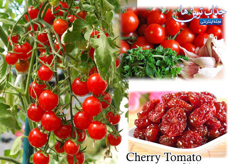 روش پرورش گوجه گیلاسی